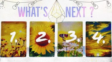 The Next 30 Days ☾Love/Money/Career☽ Pick A Card • Tarot Reading 🌞