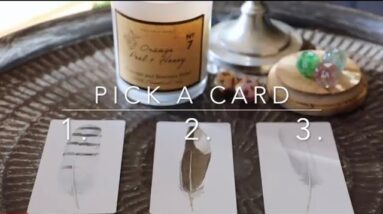 The Next Blessing Coming to You ☾Pick A Card☽ Psychic Reading°
