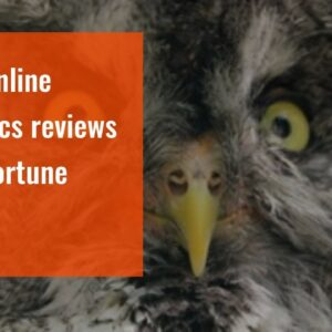 best online psychics reviews - UK fortune teller
