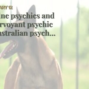 online psychics and clairvoyant psychic - Australian psychic medium