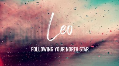 LEO 🔮 Following Your North Star 🔮 Timeless Tarot Reading