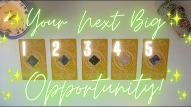 🌟What OPPORTUNITY/OFFER is Coming Next?🤑💘 Timeless Tarot Reading 🌟
