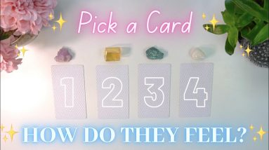 How Do They Feel About You?🌻🐝 Past, Present & Future 💕 Pick a Card
