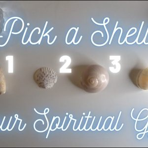 ✨🐚Pick a Shell 🐚Your STRONGEST SPIRITUAL GIFTS 🐙✨ Pick-a-Card Collab with @Kim Aesthete 🌈✨