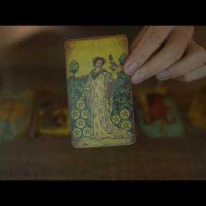 DIVINE FEMININE | WILL THE NO CONTACT WORK? | ALL ZODIAC TAROT READING